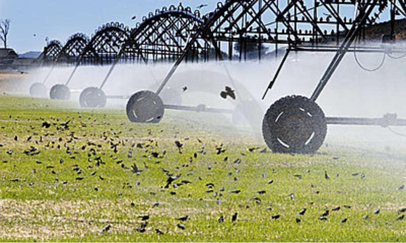 Открытки с днем водного хозяйства