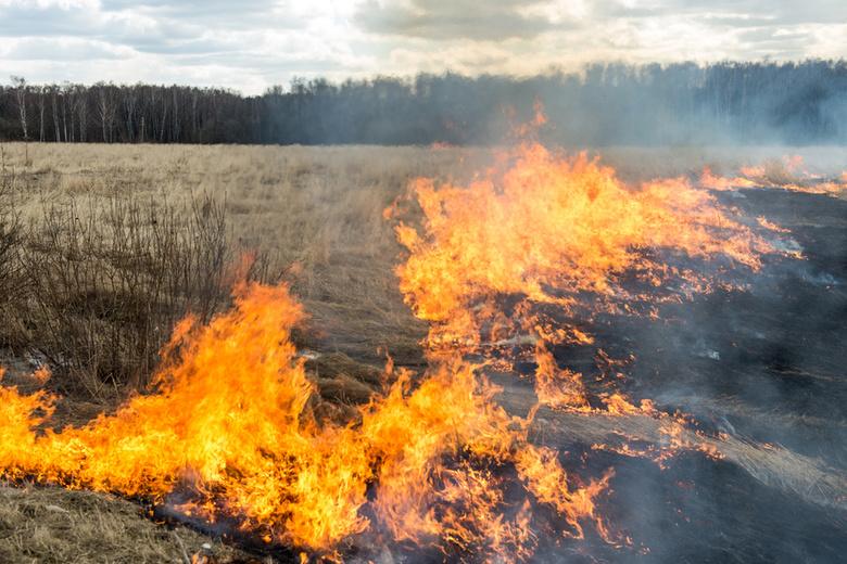 За нарушение правил пожарной безопасности оштрафовано 115 томичей