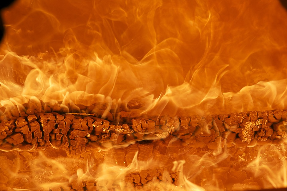 Впроцессе пожара вБлаговещенске погибли женщина игодовалый сын