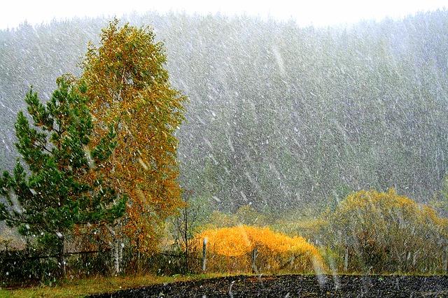 Похолодание доминус 5-ти градусов ожидается вСвердловской области