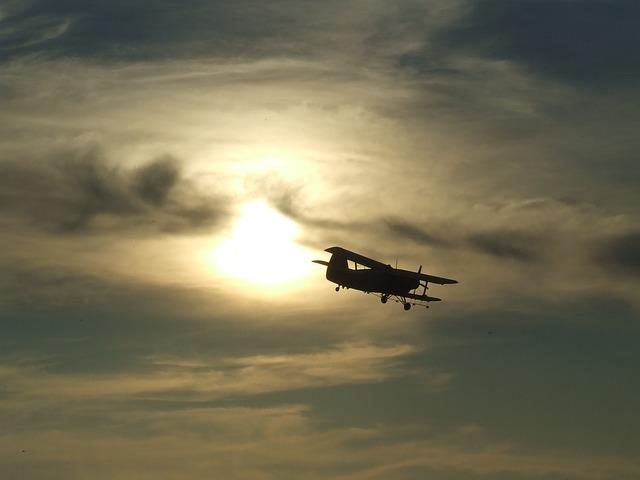 ВПриамурье при крушении самолета Ан-2 умер один пилот