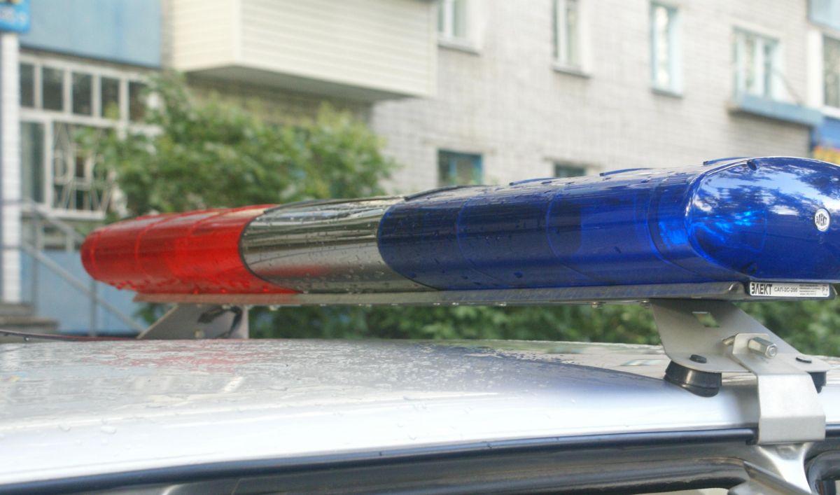 Серийных грабителей задержали в Амурской области