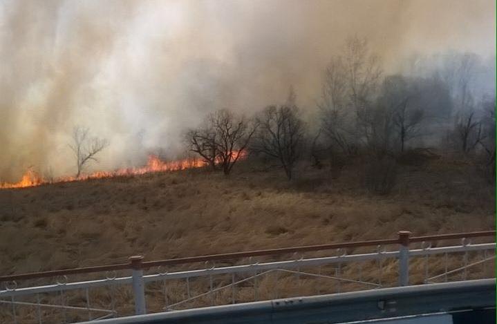Засутки вПриамурье зарегистрировали 21 природный пожар